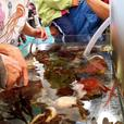 Nature Interpreter ~ Outdoor Educator SUNDAY SEPT 25