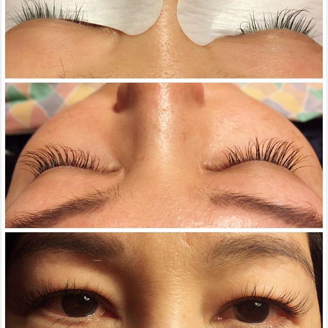 Classic And Volume Eyelash Extensions Browamplash Tinting Lash