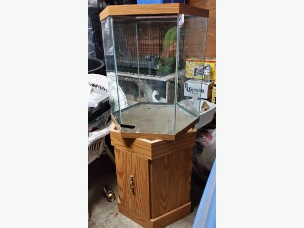 Hexagon Fish/Reptile Tank and Stand