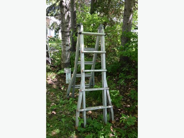 Large extendable ladder