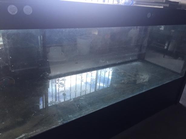 180 gallon aquarium