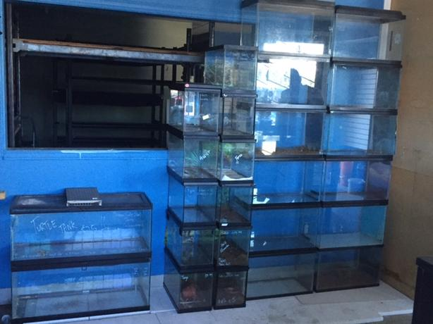 27 Glass Tanks
