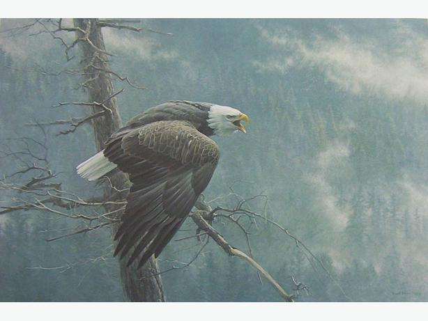The Air, The Forest and The Bald Eagle by Robert Bateman