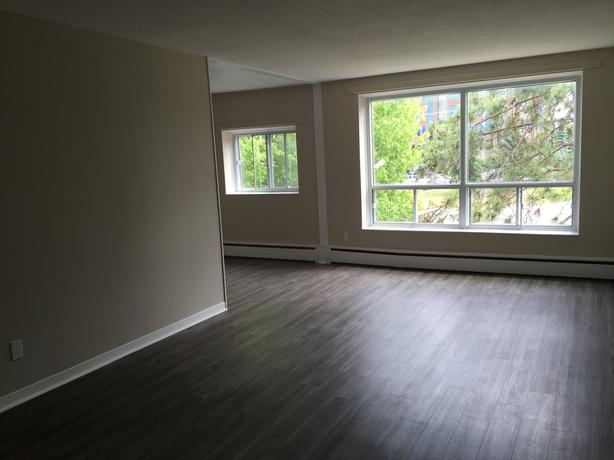 BRIGHT WINDOWS. Pet-friendly two bedroom suite in Nepean