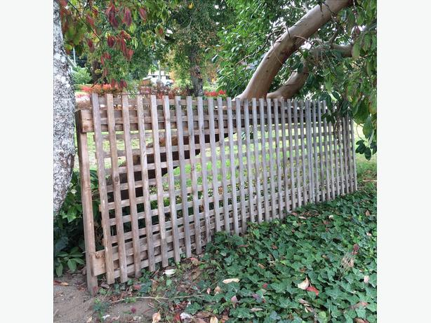 An Excellent Section of Fence - 4'x10'