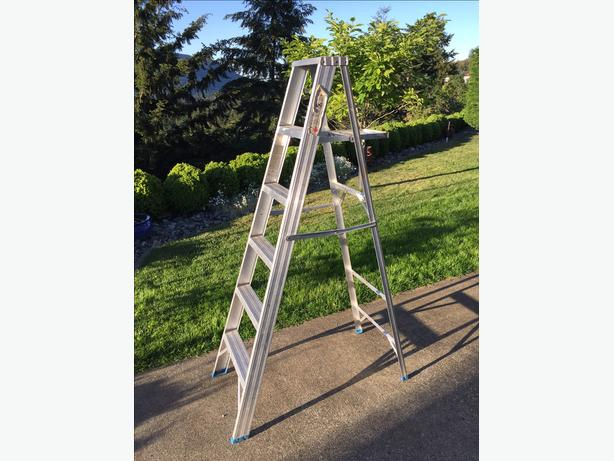 Reynolds 6 ft. step ladder