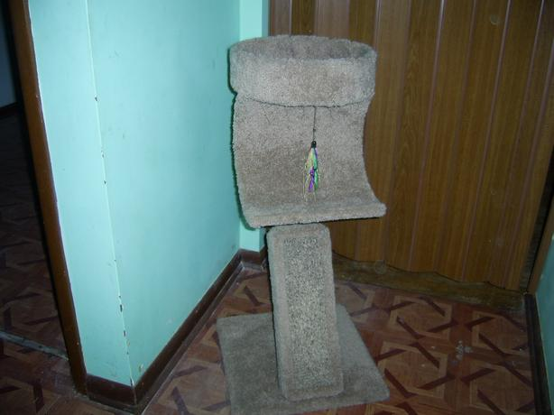 BEIGE COLOR CAT TREE