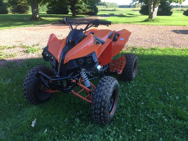 2010 Geo Rebel T3 200cc full size ATV