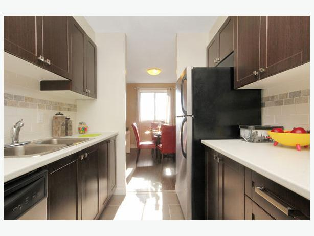 Fully renovated ground floor unit for now!