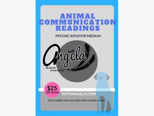 Pet readings with Angela! Psychic Intuitive Medium