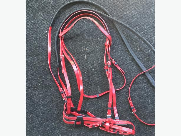 New biothane bridles