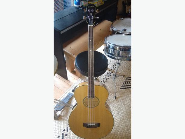 fretless acoustic bass