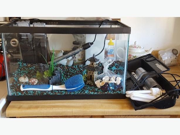 10 gallon aquarium with all the fixin 39 s north regina regina for 10 gallon fish tank hood