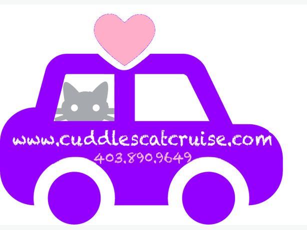 Cuddles Cat Cruise