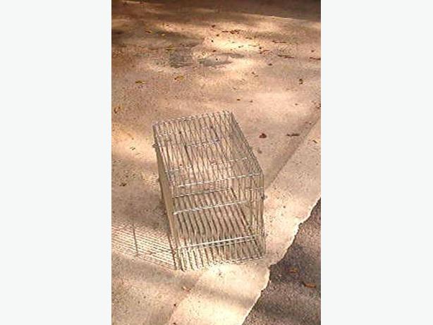 Cat transport cage
