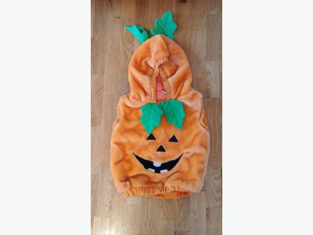 Hallowe'en Costume size 12-24 months