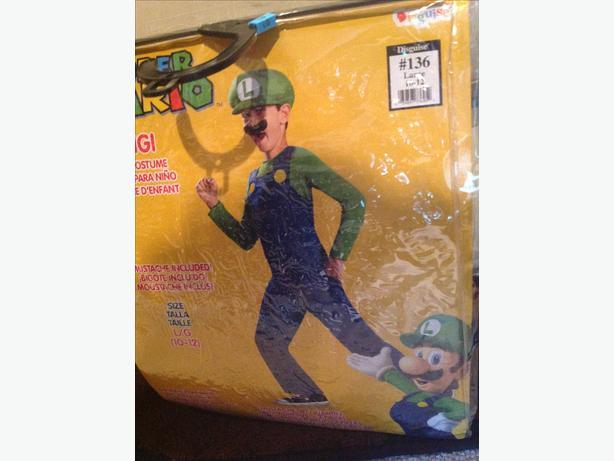 Luigi Mario Bros. Halloween costume