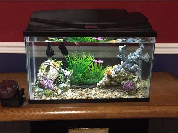 10 Gallon Top Fin Aquarium