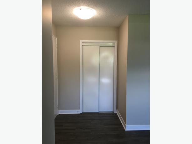 LARGE ONE BEDROOM APT. AVAILABLE FOR NOVEMBER!