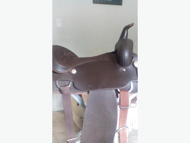 "Great shape 17"" wintec saddle"