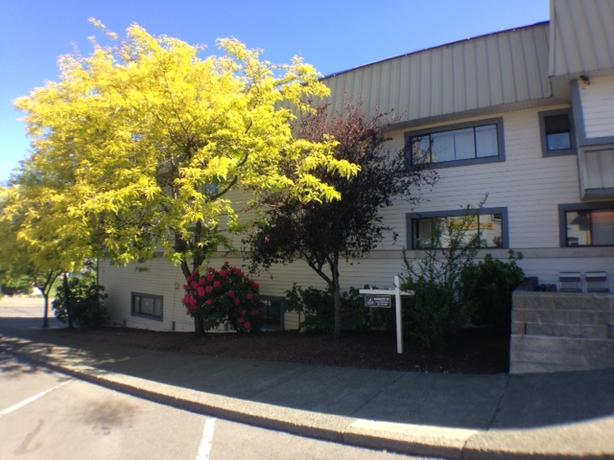 105-631 FIRST AVENUE (LADYSMITH): Bright 1 bdrm, 2 bath apartment