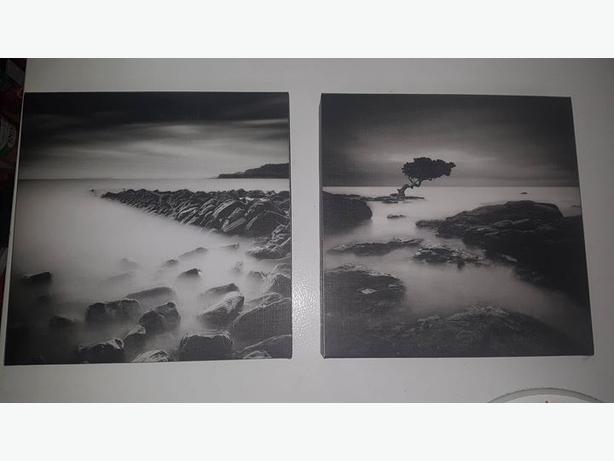 Black and White Beach Photos