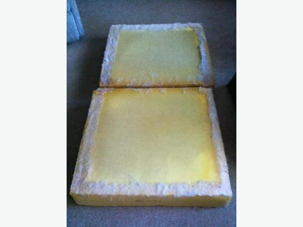 "Sponge cushions approx. 30"" x 26"" x 6""thick"
