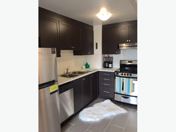 RENOVATED ONE BDRM NEAR KANATA PERFECT FOR PROFESSIONALS FOR DEC!!