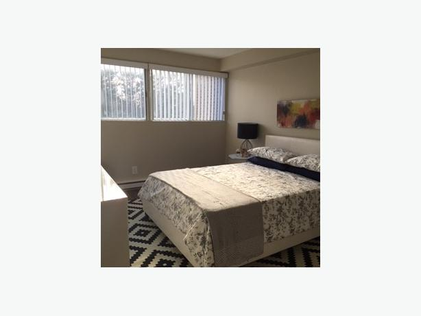 *AMENITY FILLED* RENOVATED TWO BDRM IN NEPEAN PERFECT FOR PROFESSIONALS FOR DEC
