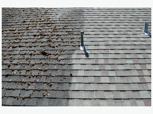Gutter cleaning, roof demossing, rot repair, shingle repair, venting