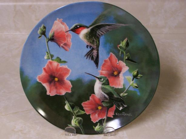 The Hummingbird (Archilochus Colubris)