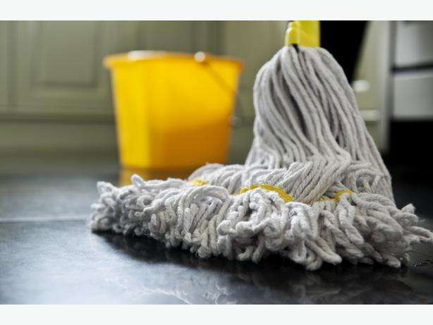 Professional in home cleaning services
