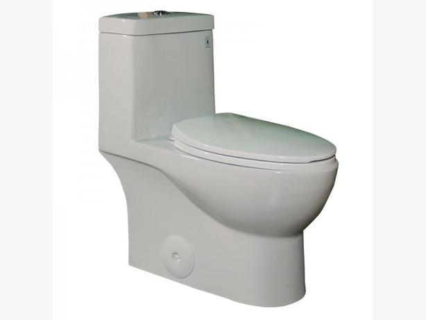 One Piece Dual Flush Skirted Toilet