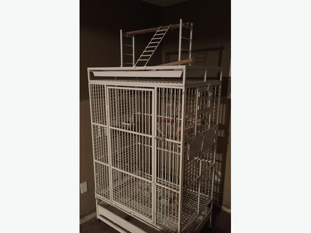 HUGE Parrot Cage