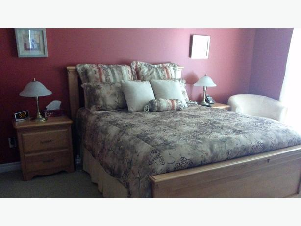 Comforter set including pillow shams, bed skirts and decorative pillows