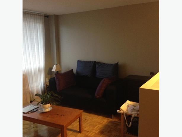 beautiful spacious 1bd for rent nov 1 or 15