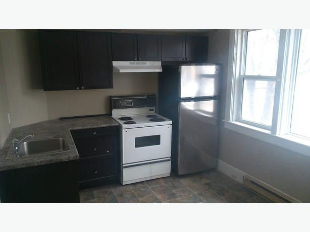SPACIOUS Renovated 3bdrm,W/D,Parking(2 levels)-St John's area