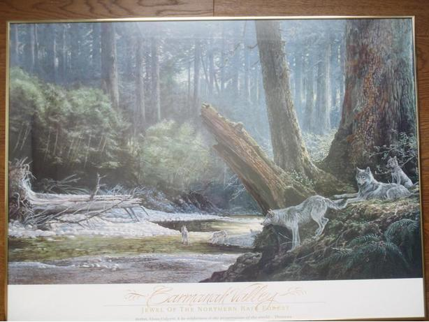 "Framed Carmanah Valley ""Jewel of the Northern Rain Forest"" Picture"