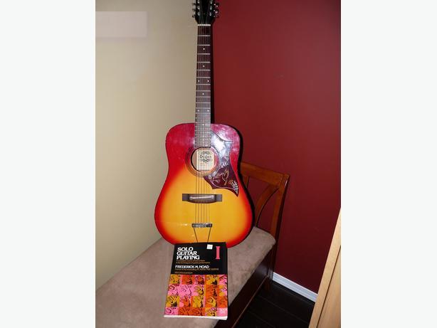 12 string Degas guitar