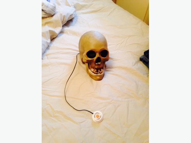 Talking Skeleton Head for Halloween