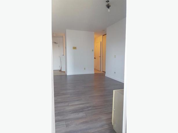 Renovated 1-bedroom Apartment for Rent