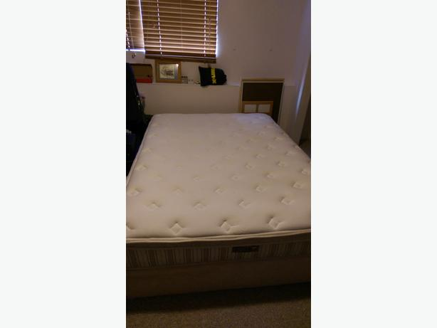 Queen Mattress & Box Spring - No Stains