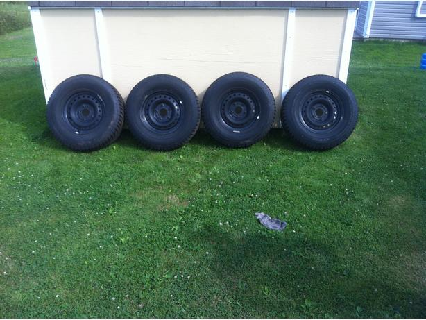 Studdable Champro winter tire / rim package