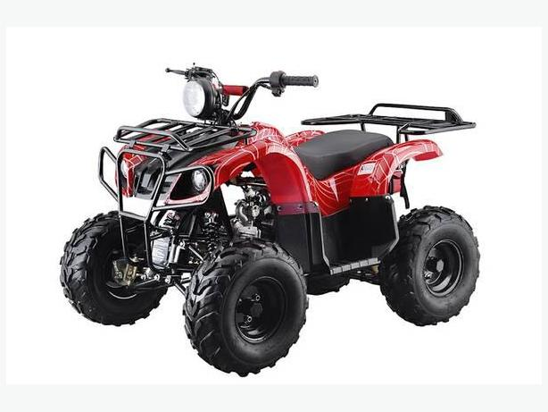 TAO TAO 110CC D MODEL ATVS @BC SCOOTERS