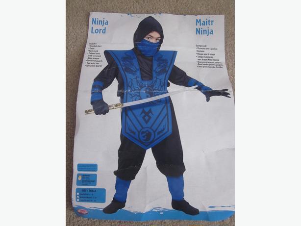 Ninja Lord Costume