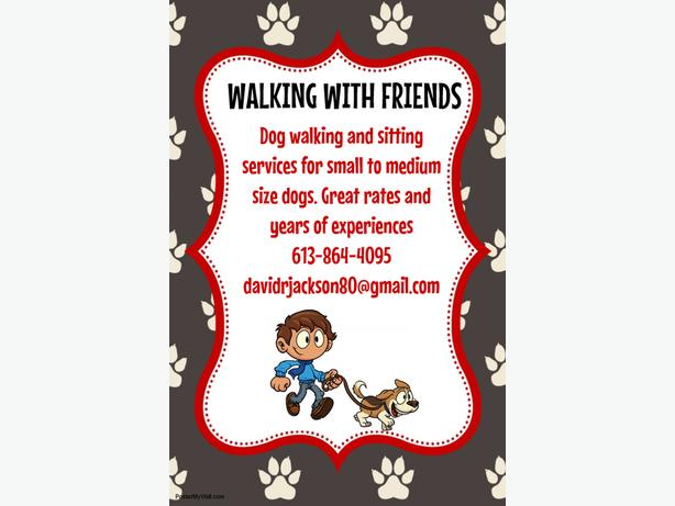 DOG WALKING AND SITTING SERVIVES