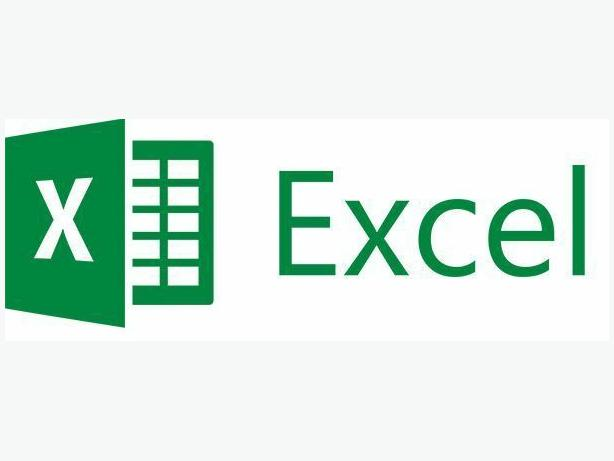 Experienced MS Excel Tutor - Beginner to Advanced Functions