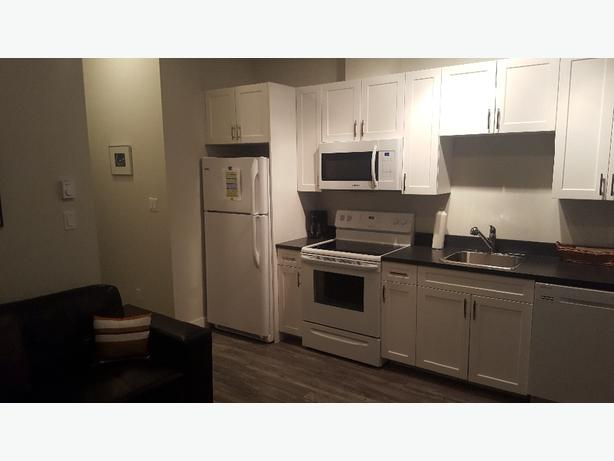 SHORT TERM furnished 1 Bedroom suite in North Nanaimo