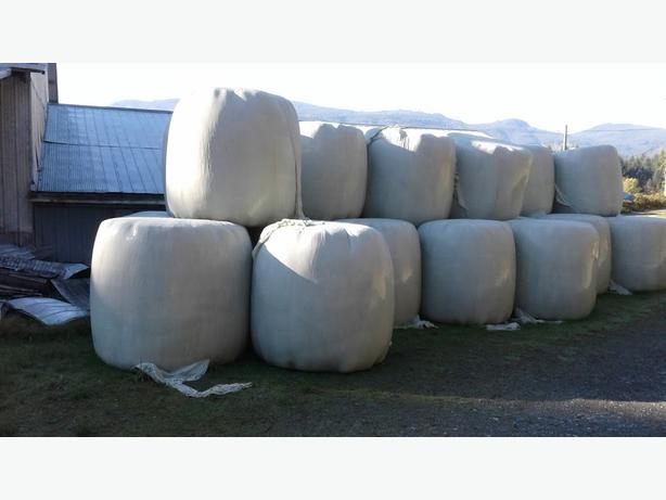 Round Bale Haylage For Sale