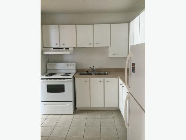 PET-FRIENDLY 2BDR TOWNHOUSE IN NEPEAN. AMENITIES INCL.